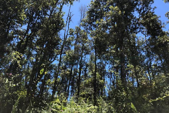Kailua Rd, Pahoa, HI 96778 (MLS #630209) :: Song Real Estate Team/Keller Williams Realty Kauai