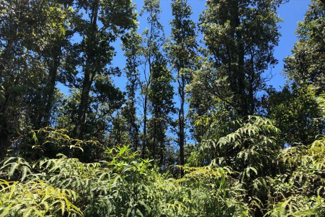 Kailua Rd, Pahoa, HI 96778 (MLS #630210) :: Song Real Estate Team/Keller Williams Realty Kauai