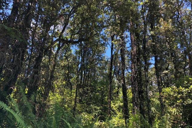 Kailua Rd, Pahoa, HI 96778 (MLS #630211) :: Song Real Estate Team/Keller Williams Realty Kauai