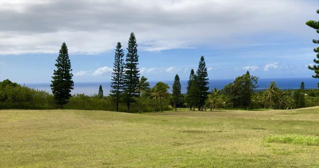 94-1500 Kaulua Cir, Naalehu, HI 96772 (MLS #630240) :: Song Real Estate Team/Keller Williams Realty Kauai