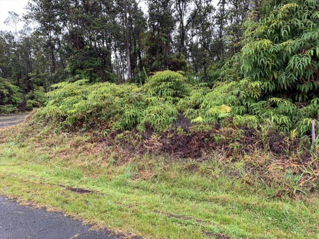 Anuhea Street, Volcano, HI 96785 (MLS #630362) :: Elite Pacific Properties