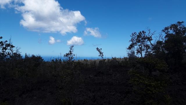 Tree Fern Ln, Ocean View, HI 96704 (MLS #630408) :: Aloha Kona Realty, Inc.