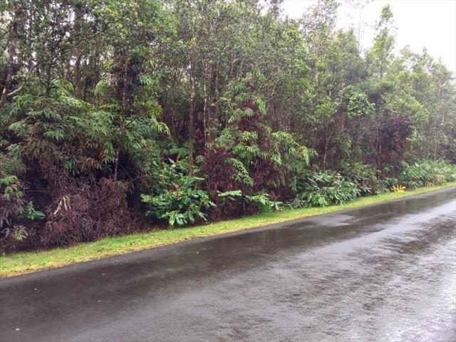 Fourth St, Volcano, HI 96785 (MLS #630553) :: Song Real Estate Team/Keller Williams Realty Kauai