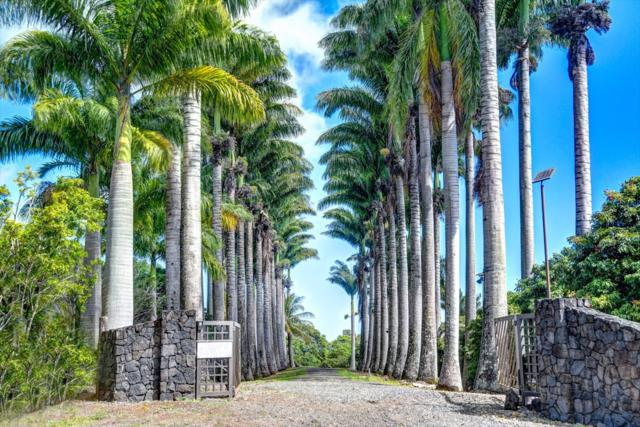 34-144 Kaihuiki Rd, Papaaloa, HI 96780 (MLS #630566) :: Aloha Kona Realty, Inc.