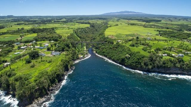 29-2306 Old Mamalahoa Hwy, Hakalau, HI 96710 (MLS #630570) :: Elite Pacific Properties