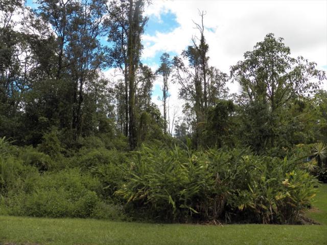 Paradise Ct, Pahoa, HI 96760 (MLS #630578) :: Song Real Estate Team/Keller Williams Realty Kauai