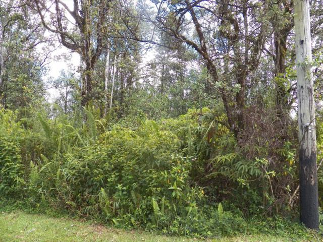 Paradise Ct, Pahoa, HI 96760 (MLS #630579) :: Song Real Estate Team/Keller Williams Realty Kauai