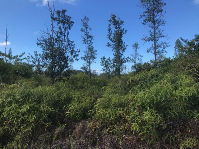 11TH AVE, Keaau, HI 96749 (MLS #630582) :: Song Real Estate Team/Keller Williams Realty Kauai