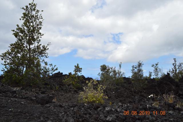 Mamalahoa Hwy, Ocean View, HI 96737 (MLS #630646) :: Team Lally