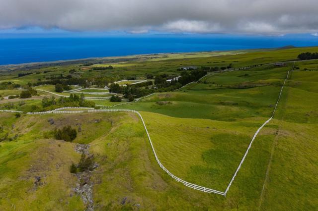 Kohala Ranch Rd., Hawi, HI 96719 (MLS #630662) :: Song Real Estate Team/Keller Williams Realty Kauai