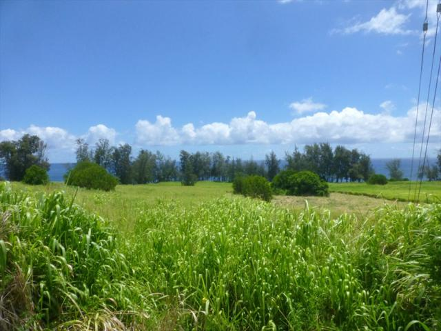 28-3308 Beach Road, Pepeekeo, HI 96783 (MLS #630687) :: Elite Pacific Properties