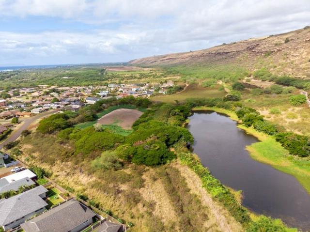 Waimea Canyon Dr, Waimea, HI 96796 (MLS #630904) :: Elite Pacific Properties