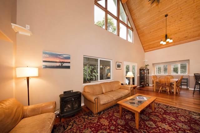 99-1809 Kaakia Wy, Volcano, HI 96785 (MLS #630994) :: Elite Pacific Properties