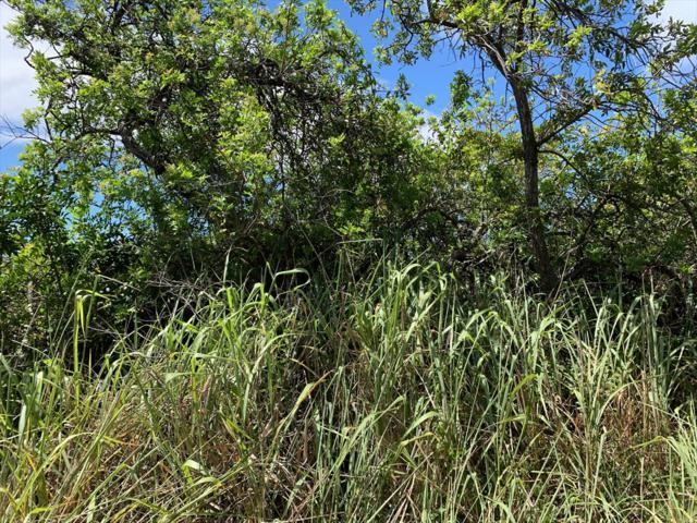 Amepela Rd, Naalehu, HI 96772 (MLS #631123) :: Aloha Kona Realty, Inc.