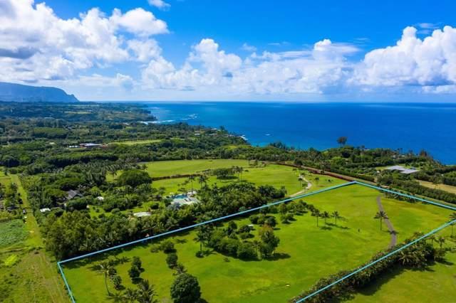 2771 Kauapea Rd, Kilauea, HI 96754 (MLS #631479) :: Kauai Exclusive Realty