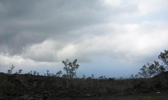 92-8949 Poha Dr, Ocean View, HI 96737 (MLS #631533) :: Team Lally
