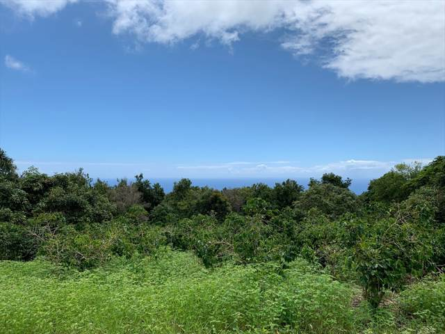 78-6537-B Mamalahoa Hwy, Holualoa, HI 96725 (MLS #631685) :: Aloha Kona Realty, Inc.