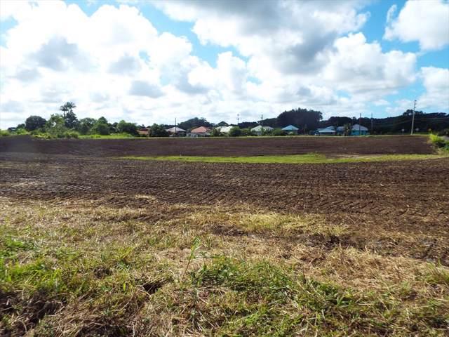 Kaleinani Pl, Hilo, HI 96720 (MLS #631692) :: Song Team | LUVA Real Estate