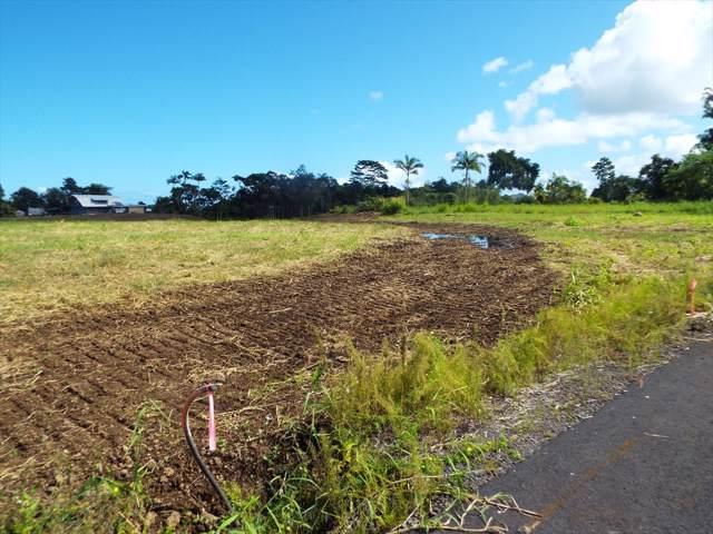 Kahealani Pl, Hilo, HI 96720 (MLS #631701) :: LUVA Real Estate