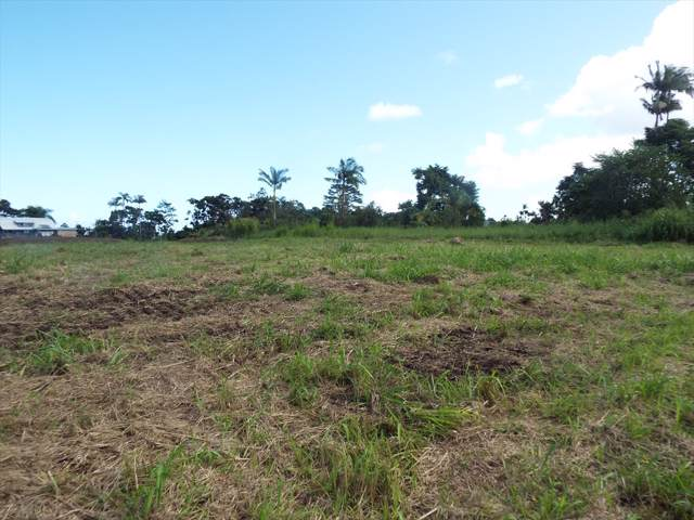Kahealani Pl, Hilo, HI 96720 (MLS #631907) :: Song Team | LUVA Real Estate