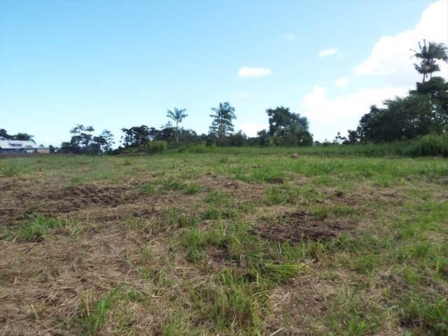 Kahealani Pl, Hilo, HI 96720 (MLS #631907) :: LUVA Real Estate