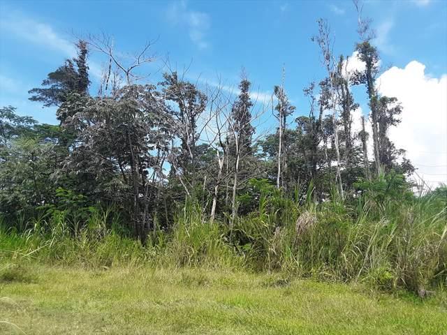 Forest Rd, Pahoa, HI 96778 (MLS #631959) :: Elite Pacific Properties