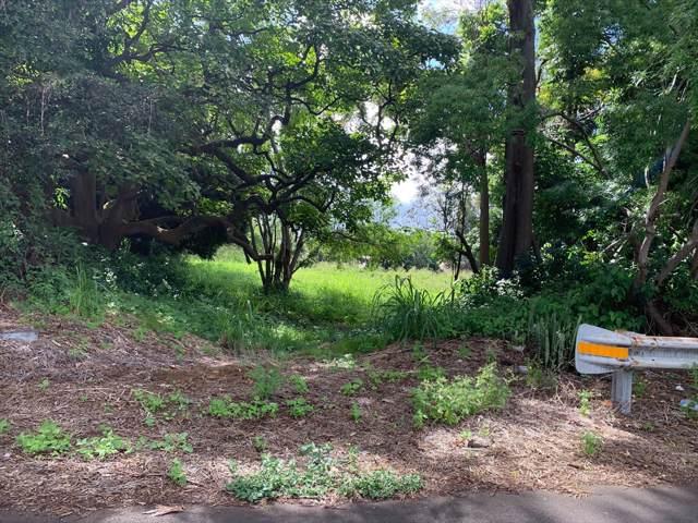Huapala, Pahala, HI 96777 (MLS #632140) :: Aloha Kona Realty, Inc.