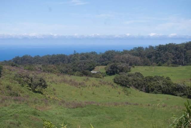 47-4350 Hawaii Belt Road, Honokaa, HI 96727 (MLS #632227) :: Song Real Estate Team | LUVA Real Estate