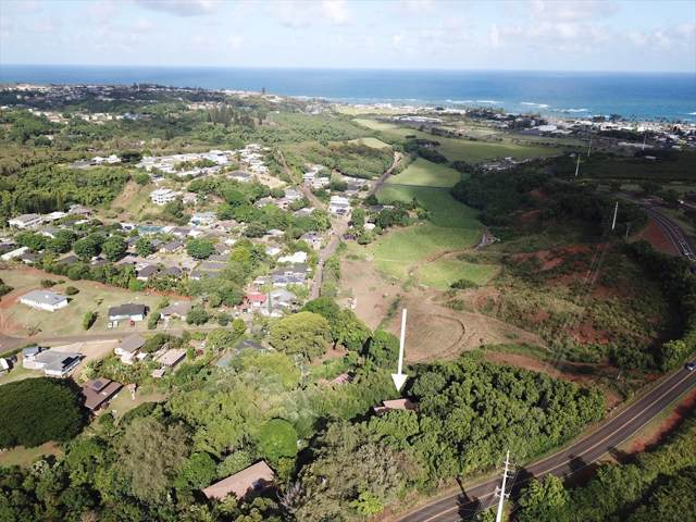 4986 Olohena Rd, Kapaa, HI 96746 (MLS #632237) :: Song Real Estate Team | LUVA Real Estate