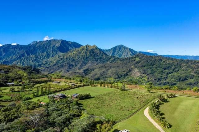 Kapaka Road, Princeville, HI 96722 (MLS #632276) :: Aloha Kona Realty, Inc.
