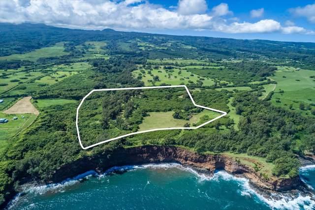 53-4223 Pratt Rd, Kapaau, HI 96755 (MLS #632287) :: Elite Pacific Properties