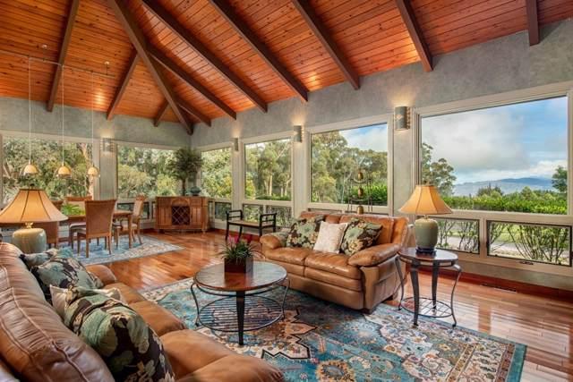67-1117 N N. Alulike Rd, Kamuela, HI 96743 (MLS #632325) :: Song Real Estate Team/Keller Williams Realty Kauai