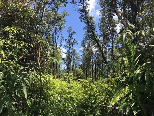 Forest Rd, Pahoa, HI 96778 (MLS #632363) :: Elite Pacific Properties