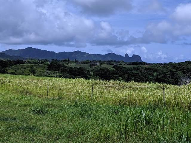 Kulana Pl, Kapaa, HI 96746 (MLS #632460) :: Kauai Exclusive Realty