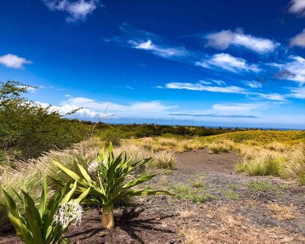 68-3886 Kaulele Pl, Waikoloa, HI 96738 (MLS #632565) :: Song Real Estate Team | LUVA Real Estate