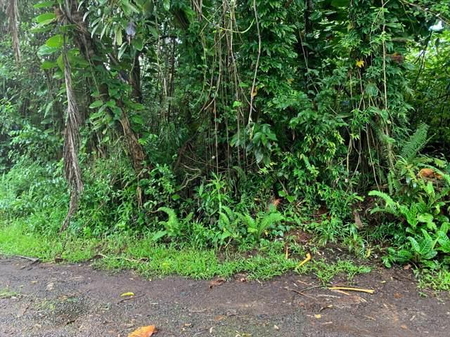 Kahoolawe Rd, Pahoa, HI 96778 (MLS #632721) :: Elite Pacific Properties
