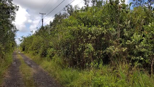 Road 10 (Poouli), Kurtistown, HI 96760 (MLS #632749) :: Song Real Estate Team | LUVA Real Estate
