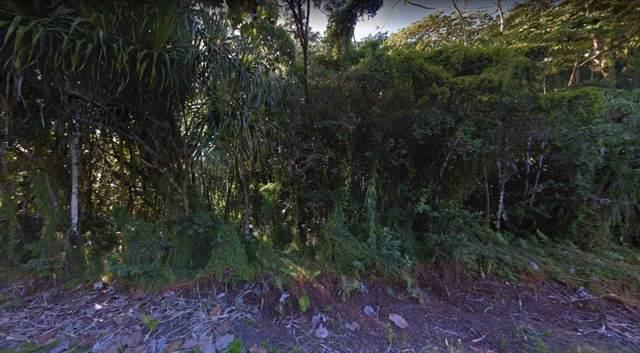 S Puni Makai Lp, Pahoa, HI 96778 (MLS #632866) :: Steven Moody