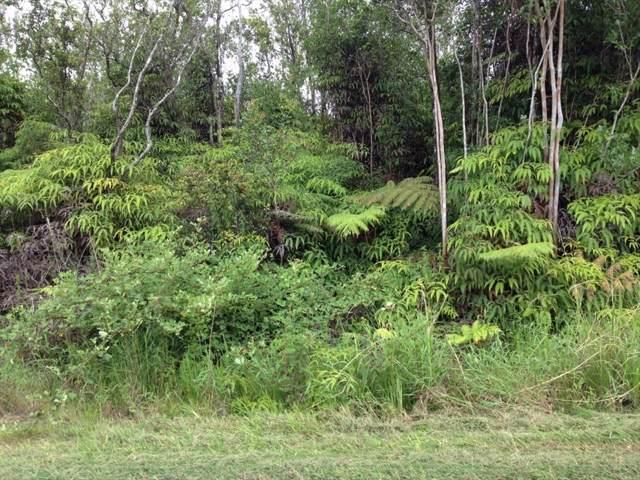 11-2470 Makoa Dr., Volcano, HI 96785 (MLS #632971) :: Elite Pacific Properties