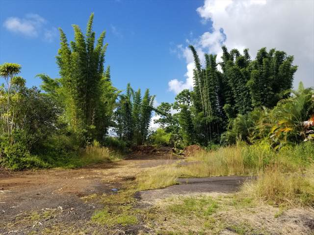 Address Not Published, Hilo, HI 96720 (MLS #632980) :: Elite Pacific Properties