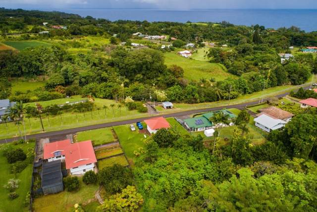 27-341 Kaieie Rd, Papaikou, HI 96781 (MLS #633045) :: Elite Pacific Properties