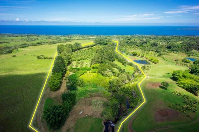 27-629 Old Onomea Rd, Papaikou, HI 96781 (MLS #633055) :: Elite Pacific Properties