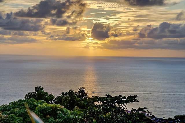 77-347 Emalia Pl, Kailua-Kona, HI 96740 (MLS #633076) :: Elite Pacific Properties