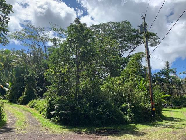 Cottage Cir, Pahoa, HI 96778 (MLS #633129) :: Steven Moody