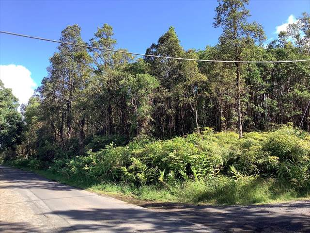Address Not Published, Mountain View, HI 96771 (MLS #633138) :: Elite Pacific Properties