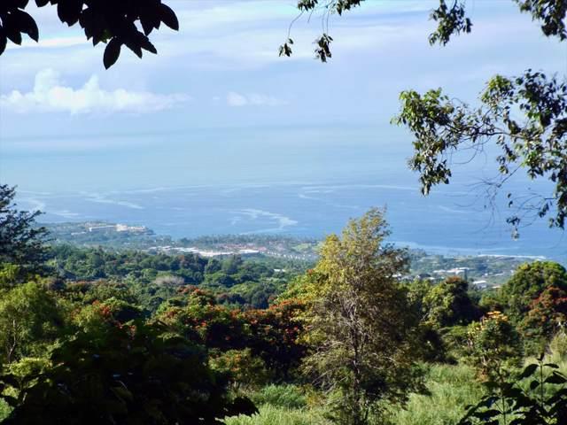 Address Not Published, Holualoa, HI 96725 (MLS #633213) :: Elite Pacific Properties