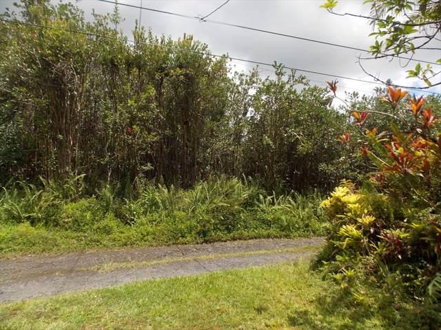 16-1399 Road 6 (Ooaa), Mountain View, HI 96771 (MLS #633225) :: Elite Pacific Properties