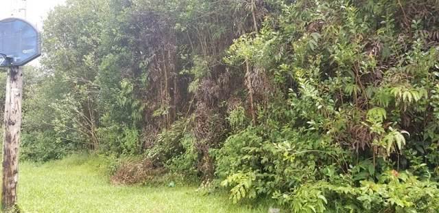 Hibiscus Pl, Mountain View, HI 96771 (MLS #633257) :: Aloha Kona Realty, Inc.