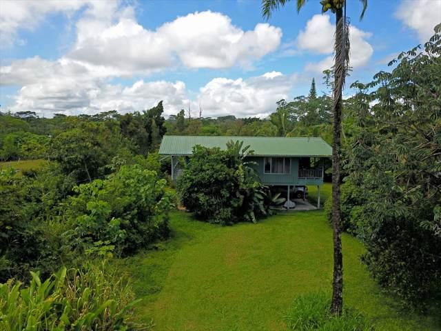 15-1352 25TH AVE, Keaau, HI 96749 (MLS #633346) :: Elite Pacific Properties