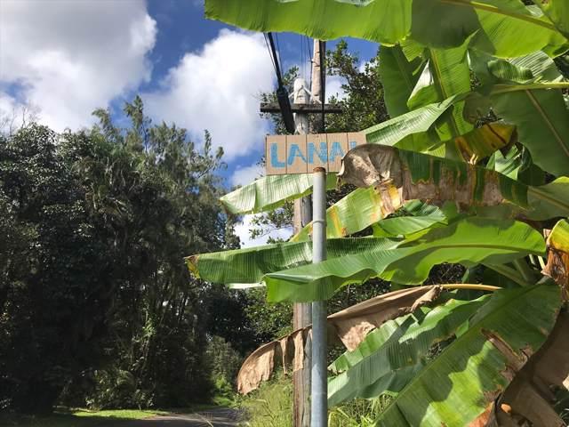 Address Not Published, Pahoa, HI 96778 (MLS #633392) :: Song Real Estate Team   LUVA Real Estate